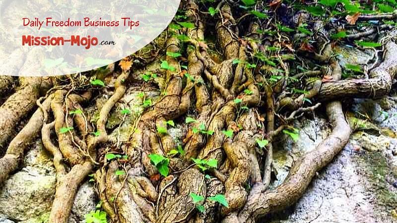 Digital Marketing Mojo Tip 23 – Crowd Sourcing